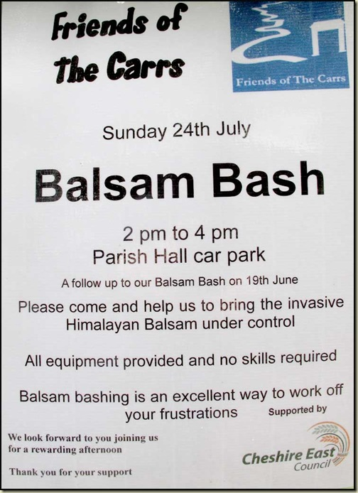 Balsam Control