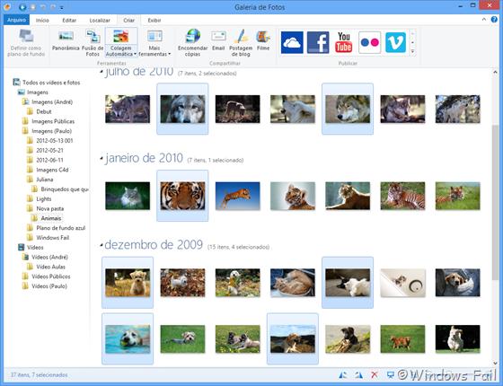 Segure o Ctrl e clique nas fotos as quais você deseja criar a colagem para selecioná-las. Depois de selecionar as fotos, clique na guia Criar e clique em Colagem Automática