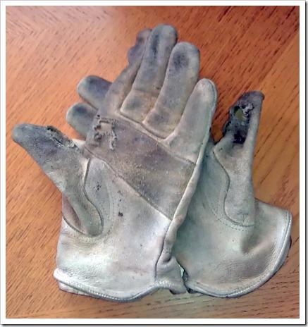 Work Glove-2