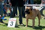 BMCN Kampioenschaps Clubmatch 2011-7189.jpg