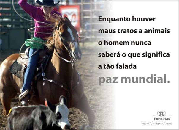 rodeio3