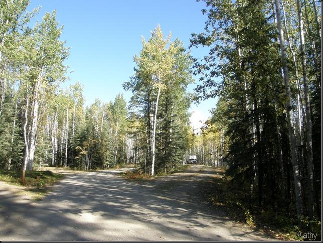 Campsite at Big Creek Territorial Campground