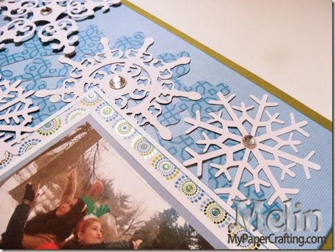 snowflake closeups2-480