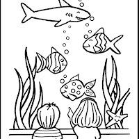 Vissen_08.jpg