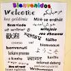 Fotos del Colegio » Bienvenidos