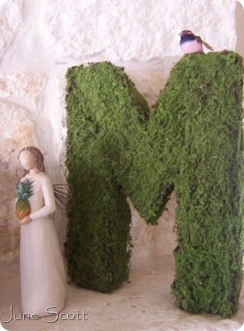 Moss_Angel