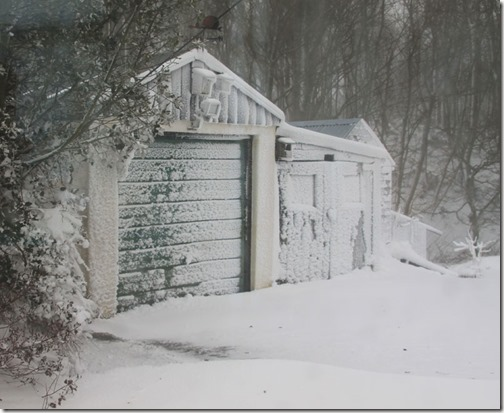 6-snow