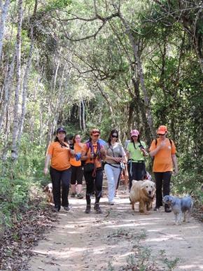 Dogs Trekking 6 (200)