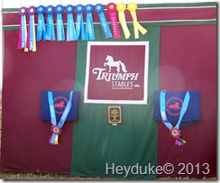 Ribbons at Horse Event