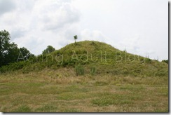 Cahokia Mounds 7