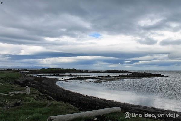 Illugastadir-Islandia-focas.jpg