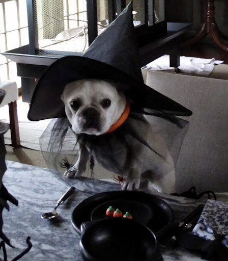 I put on this witch's hat and many spooky things started going on around the farm...