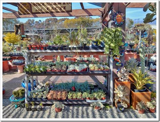 130403_StaBarbara_Terra-Sol-Garden-Center_027