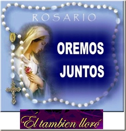LLORÓ-JULIO171