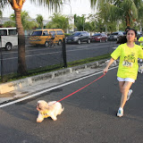 Pet Express Doggie Run 2012 Philippines. Jpg (72).JPG