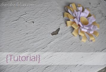 chrysanthemum Flower tutorial