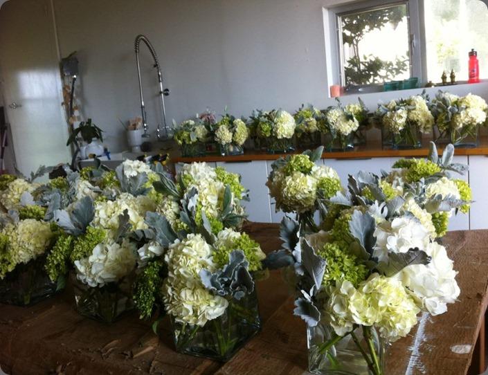 studio 21252_10151405578925668_805582545_n last petal austin