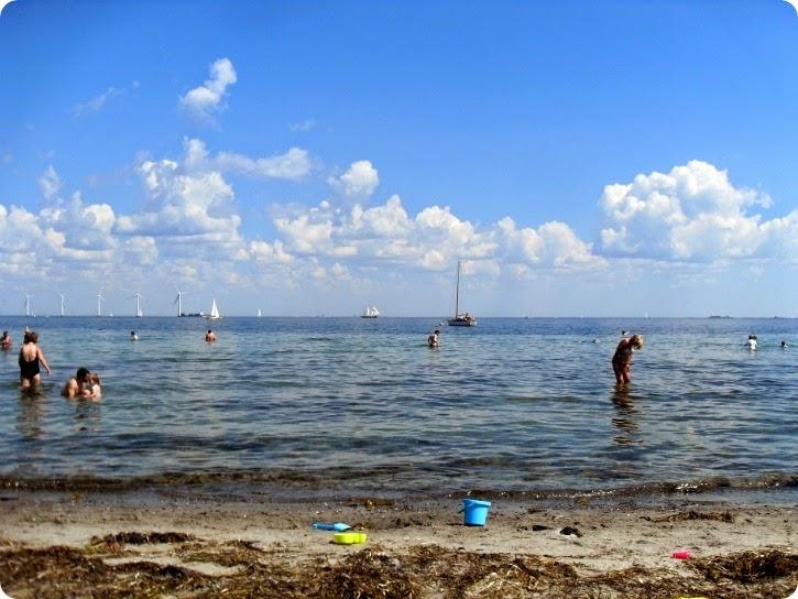Amager Strandpark - juli 2014