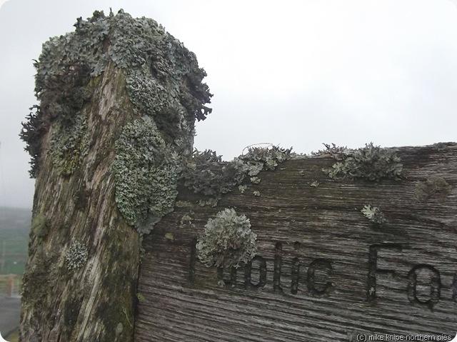 footpath sign with lichen