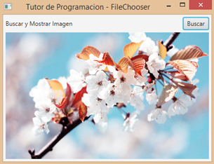imageView-mostrar imagen