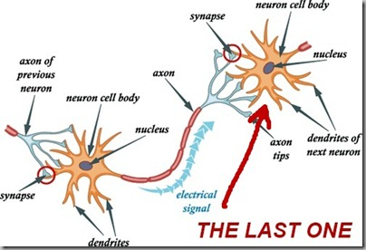 Last Nerve