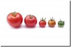 frutas-dukan