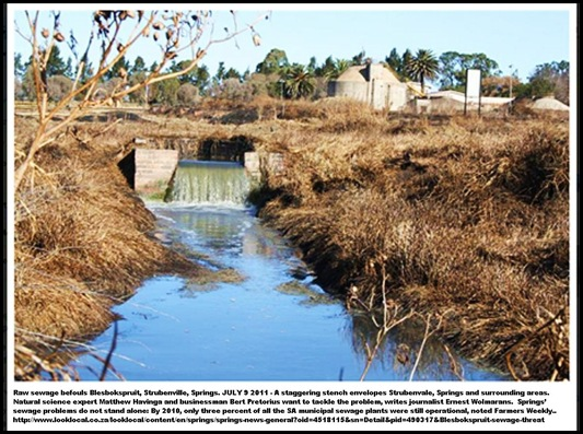 WATERPOLLUTION SPRINGS BLESBOKSPRUIT STRUBENVILLE JULY92011