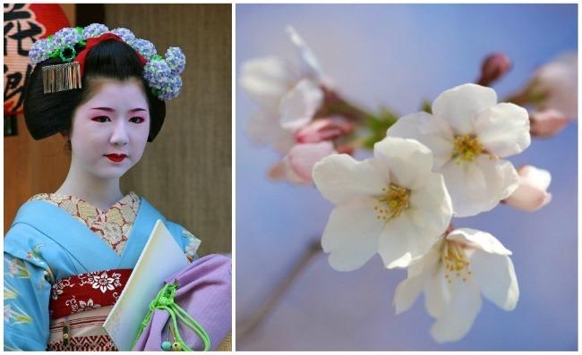 my japan 3