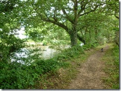 handsacre path