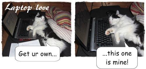 laptop love
