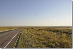 08-11 saratov 035 800X steppe herbeuse sud saratov