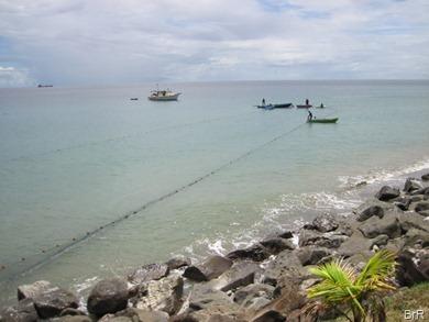 Grenada_Goyave_Fischfang_2