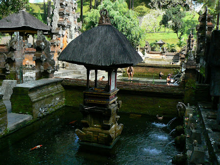 What to see in Bali:  Tampaksiring