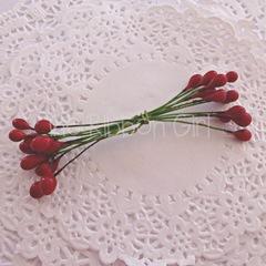 184423-mediumberries