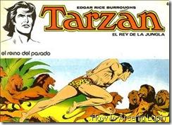 P00004 - Tarzan #4