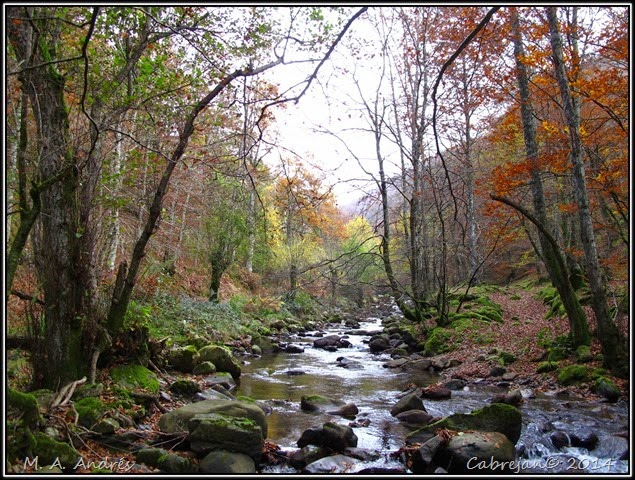 Lantz otoño 027