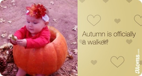 autumn-is-officially-a-walker