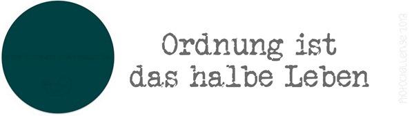 smwizdd 29.01.13