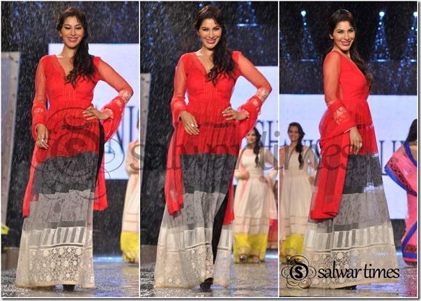 Sophie_Chaudary_Manish_Malhotra_Salwar_Kameez (1)
