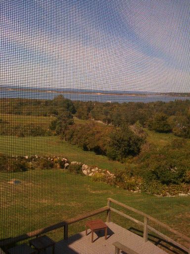 Here's the view through the window screen in my bedroom upstairs.