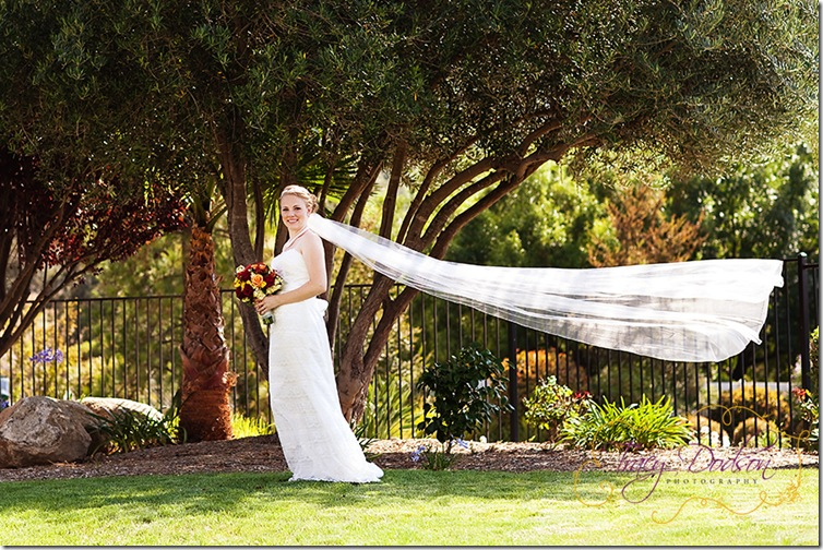 P&A Bride 1   095 rep blog