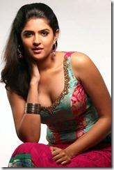 Deeksha-Seth-hot