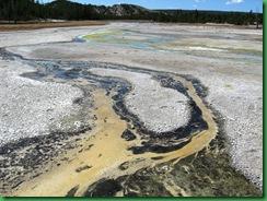 Norris Geyser Basin (82)