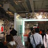 sasuke at odaiba in Odaiba, Tokyo, Japan