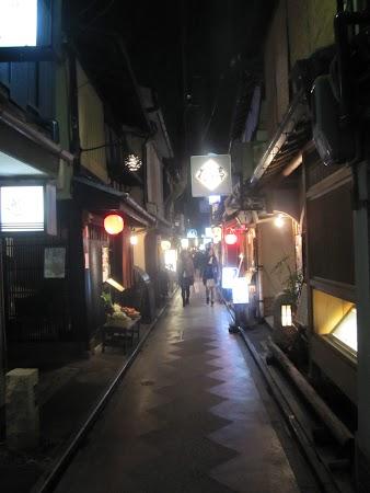 Obiective turistice Japonia: Pontocho, teritoriul gheiselor.JPG