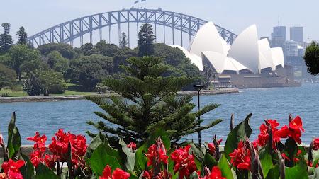 Imagini Australia: Opera vazuta din Gradinile Botanice Sydney