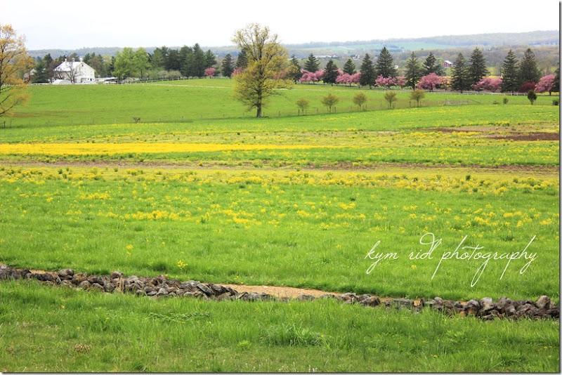 gettysburg ike