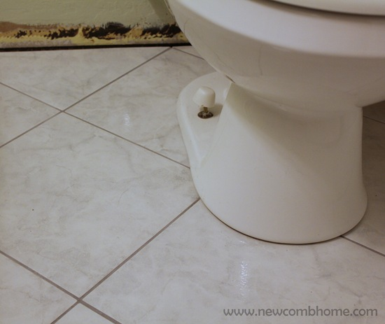 tile-around-toilet