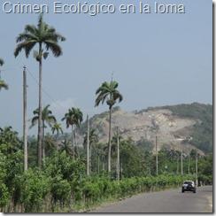 Crimen Ecológico