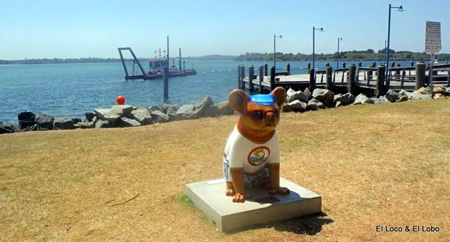 Painted Koalas of Port Macquarie (2)